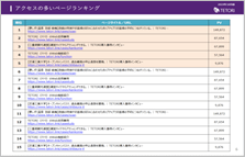 ユーザー分析&効果検証レポート(PDF・一部)