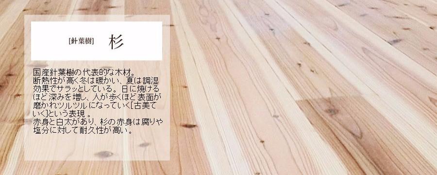 床無垢材杉