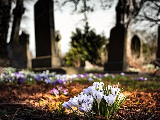 霊園と墓地の違いは?